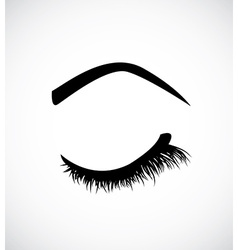 Eyelashes vector