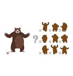 Find correct shadow Childrens test Big good bear vector image