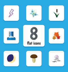 Flat icon natural set of canadian cattail vector