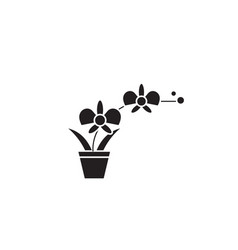 orchid pot black concept icon orchid pot vector image