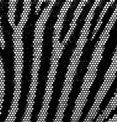 Zebra strippes mosaic background vector image