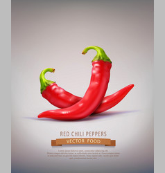 two red hot chilli peppers isolated vector image