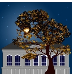 Autumn moonlight night in the city vector image vector image