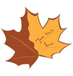autumnal banner vector image
