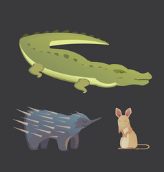 Australian animals crocodile echidna and vector