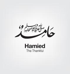 Hamid vector