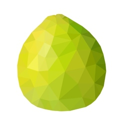 low poly green pomelo vector image