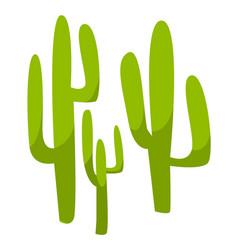 Mexican cactus plant cacti flora in mexico vector