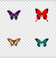 Set of moth realistic symbols with striped purple vector
