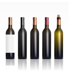 Set of open and close wine bottles vector