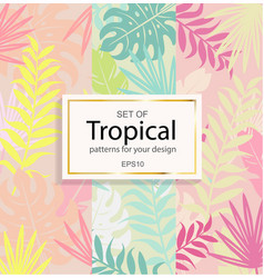 set of modern tropical background for your design vector image vector image