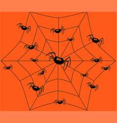 Black spider and spider web on thinly spider web vector