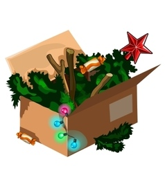 Christmas tree kept in box after holiday vector image vector image