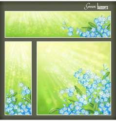 Green banners set with flowers and blurred sunrays vector image vector image