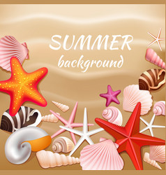 Seashell sand summer background vector image vector image