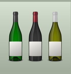 set of 3 realistic wine bottles with blank vector image vector image