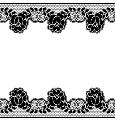 Floral lace borders vector image