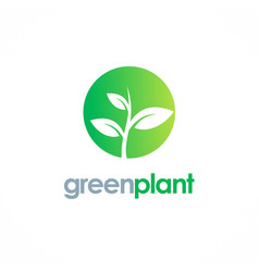 green plant nature logo vector image