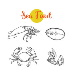 Sketch lobster tuna fish squid isolated vector
