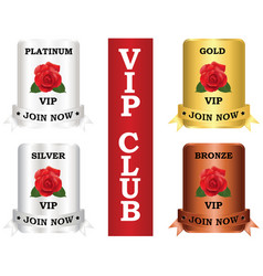 vip package plate vector image