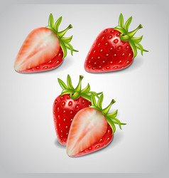 Whole and cut berries red ripe strawberries vector