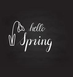 hello spring grunge vintage lettering on a vector image