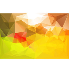 lowpoly texture colorful vector image