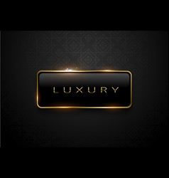 luxury black label with golden frame sparks on vector image vector image
