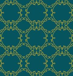Lace seamless pattern Elegant vintage background vector image vector image