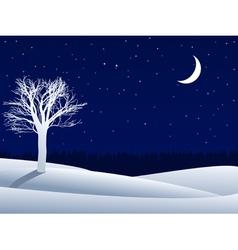 night 1 1 vector image