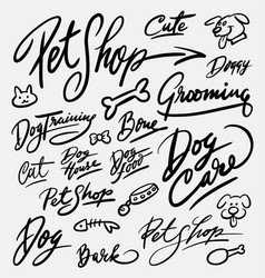 pet shop and dog care hand written typography vector image