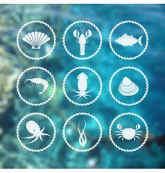 Seafood icons set on blur background vector image