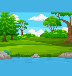 forest scene with many trees and river vector image