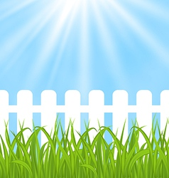 Fresh green grass over wood fence background vector