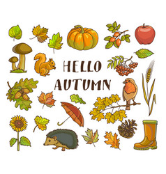 Hello autumn poster with isolated thematic vector