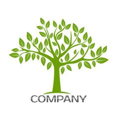 modern tree logo vector image