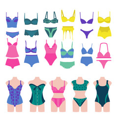 set of beautiful fashion lingerie elements vector image