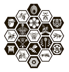 set of honey emblems vector image