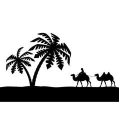 The man on the camel in palm trees vector image