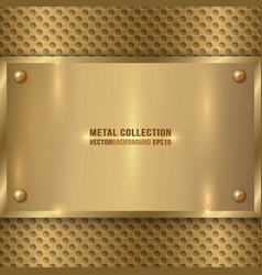 abstract metal old gold plaque on the cell grid vector image