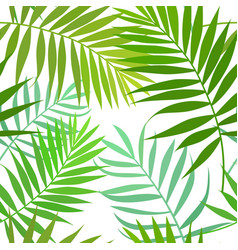 seamless pattern of palm leaves vector image vector image