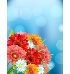 Bouquet of flowers gerber vector