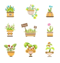 Flowers In Pots Collection vector
