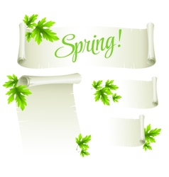 Manuscript template with green leaves vector