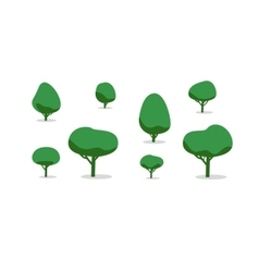 Set of different trees with shadows simple style vector
