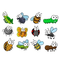 Colorful set of cartoon insects characters vector image vector image