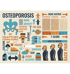Osteoporosis vector image vector image