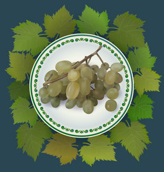 bunch of grapes on white plate vector image vector image