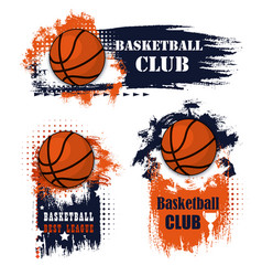 basketball sport grunge symbols with ball vector image