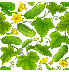 cucumber pattern vector image